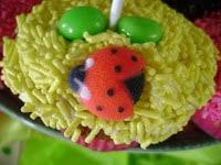 close up of ladybug sugar mold