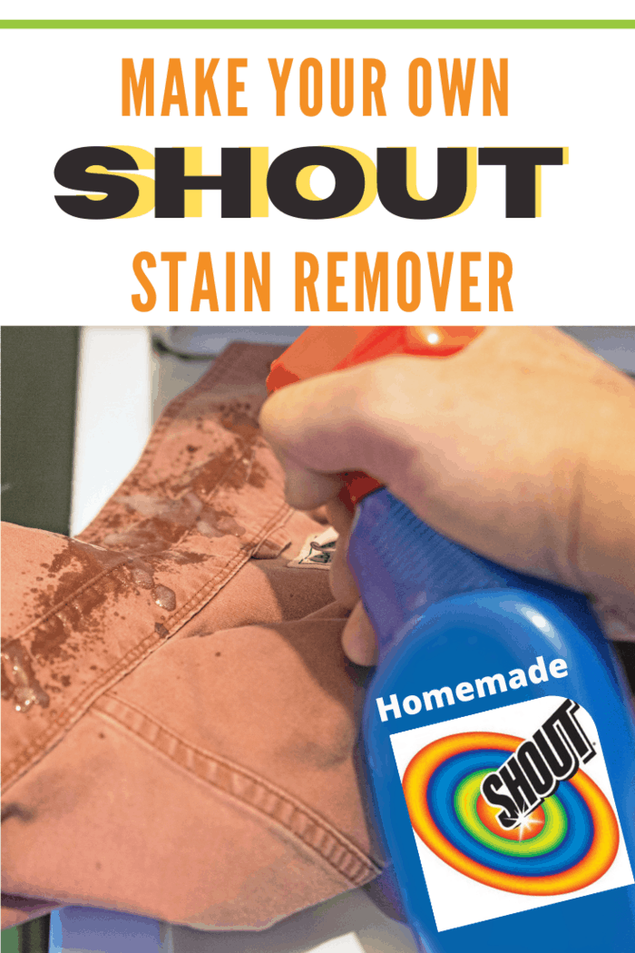 homemade shout stain remover.