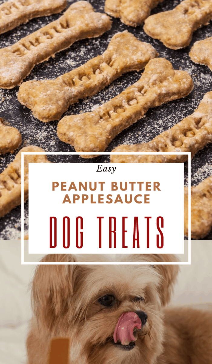 Make your own dog treats with this easy, 4-ingredient Peanut Butter Applesauce Dog Treats recipe. Fido will love the crunch and flavor! #homemadedogtreats #peanutbutterdogtreats #dogtreats #peanutbutterapplesaucedogtreats #diydogtreats #pbapplesaucedogtreats