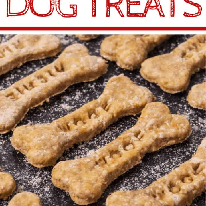 peanut butter applesauce dog treats cut into bone shapes with WOOF imprint resting on cookie sheet after baking.