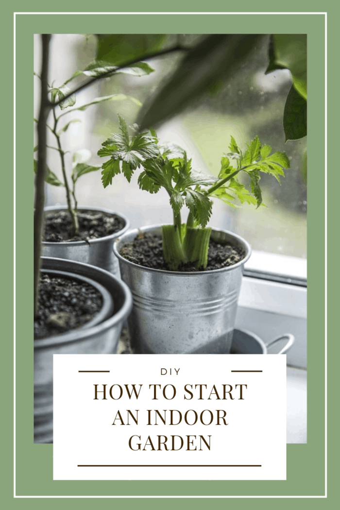 Learn how to start your indoor garden during the winter to harvest fresh veggies and flowers during summer.
