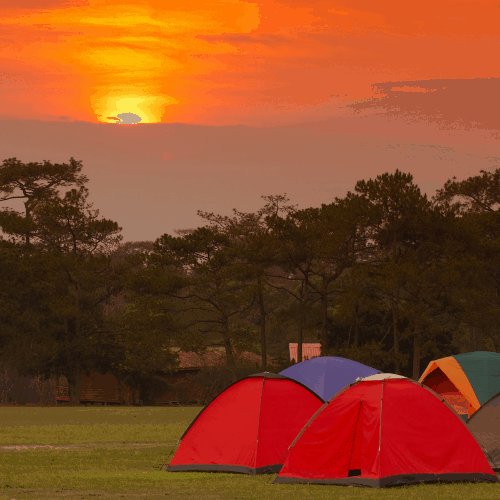 tents with camping cots set up during beautiful sunset