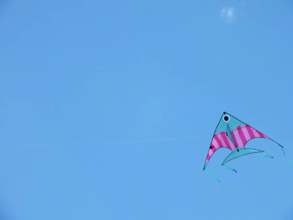 antsy pants delta fish kite flying