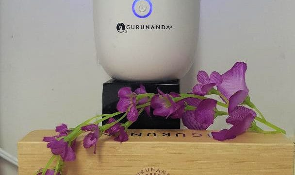 gurunanda honeycomb diffuser with top six gurunanda essential oils