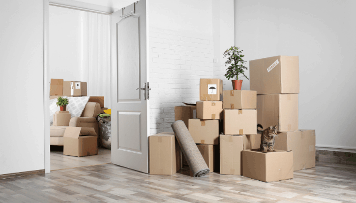Moving out for the First Time: Here is What You Should Know