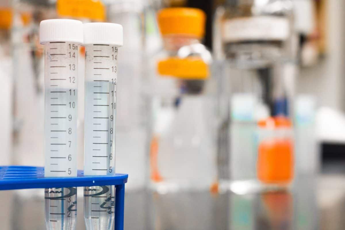 drug test at lab