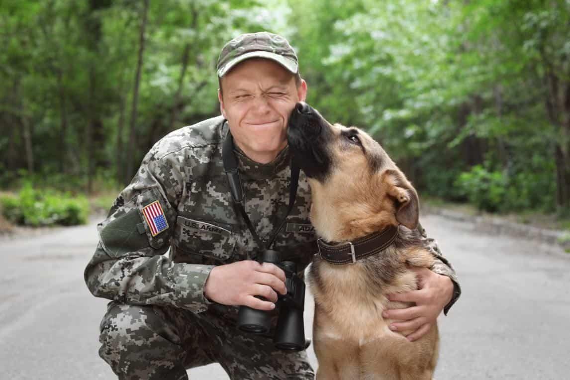benefits of a ptsd service dog