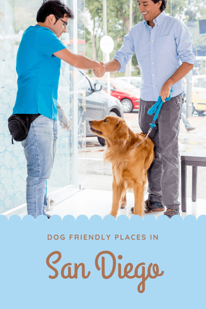 The menu offered at this spot features an eclectic blend of both South and Central American cuisine and also provides a dog-friendly patio.