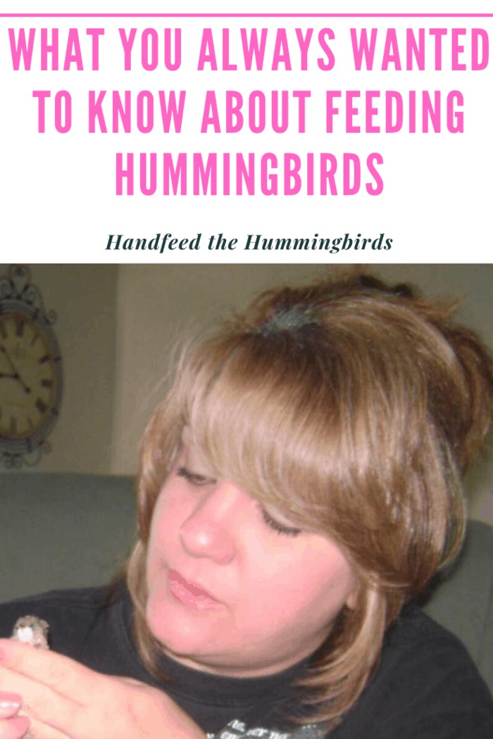 If your regular hummingbirds seem okay you holding the feeder, you may be ready to move on to hand-feeding the birds. Remove your feeders when you want to hand feed. This eliminates other sources of food and encourages them to eat from you.