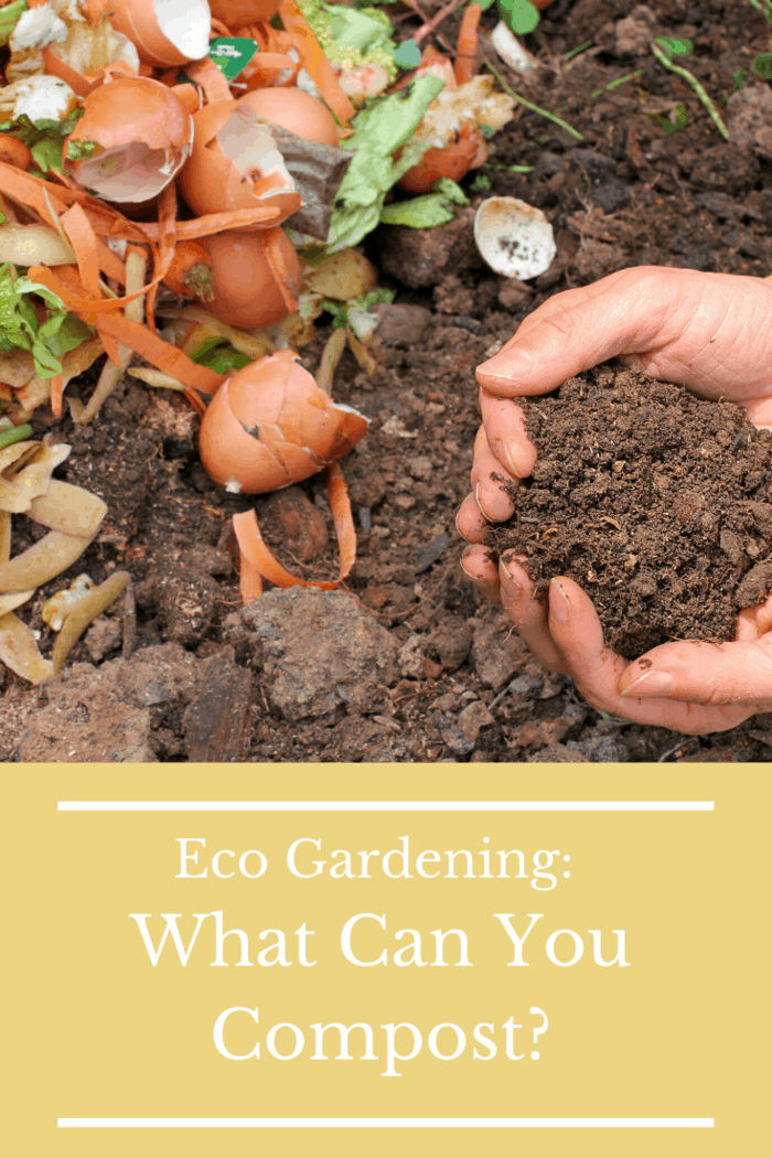 You can compost anything that rots. Fruit, vegetables, even coffee grounds and the paper filters that hold them. If they can deteriorate and rot away, they can go in your compost pile.