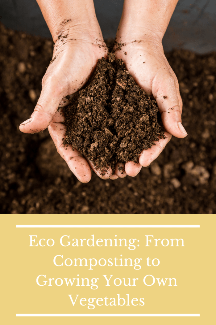 In our quest to change that, at least for my family, we should decide to begin with creating an environmentally secure home. This is the time to begin to learn about composting.