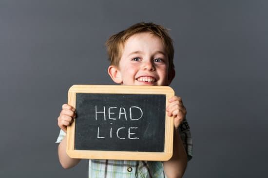 Although lice are a nuisance, they don't have to be incredibly difficult to get rid of. Here are some ways to effectively treat a lice infestation.
