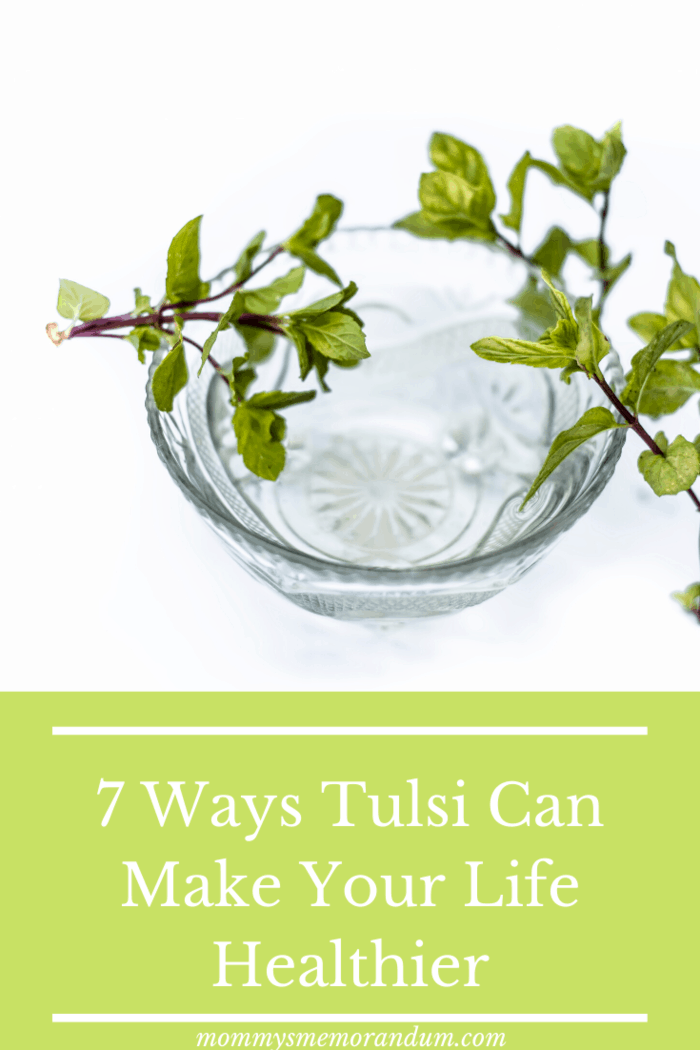 Studies have shown that if you have Tulsi daily, it curtails agony, calms down the nerves, and lowers the blood pressure.