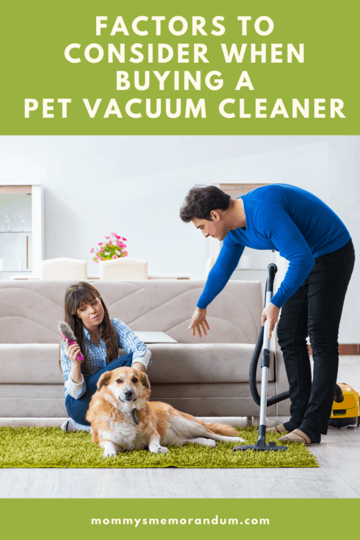 woman and dog on rug man using a pet vacuum to clean