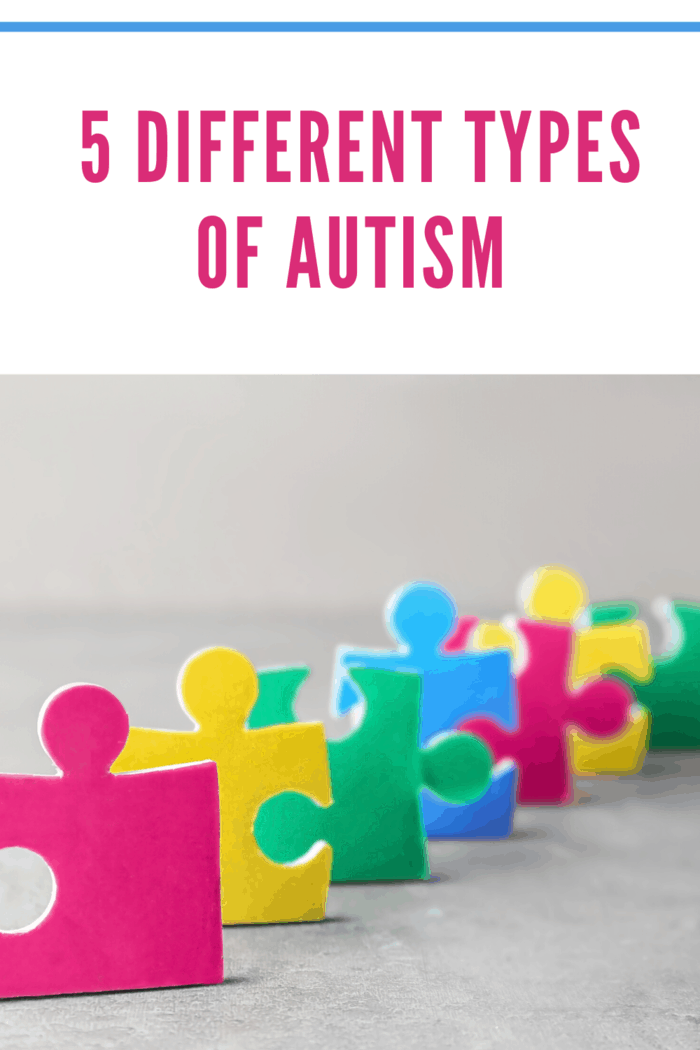 Autists are of 5 different types.
