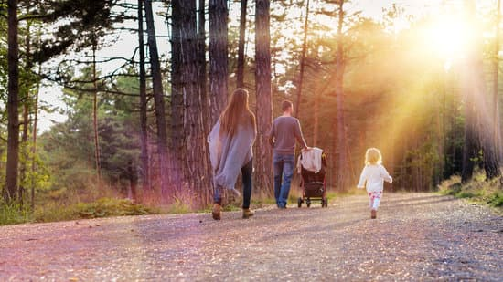 Happy young family taking a walk in a park, back view. Family holding hands walking together along forrest path with their daughter, father pushing the pram.