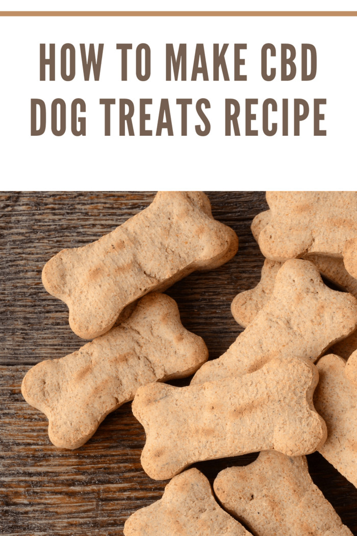 A top view image of several bone shaped cbd dog treats.