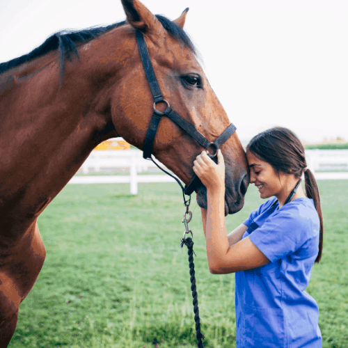 woman enjoying purchase after buying first horse