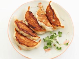 pan fried dumpling on plate with garnish