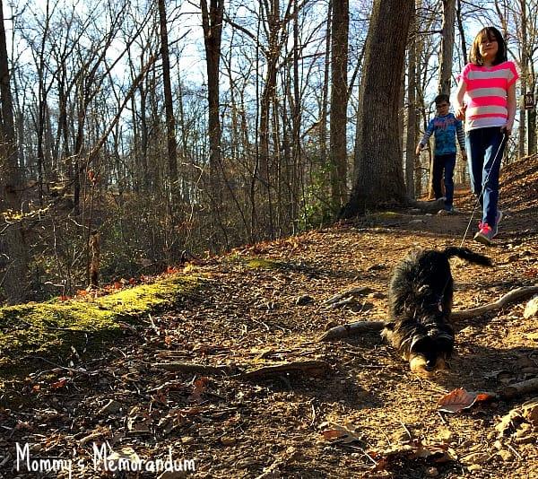Bailey Mae on the trail