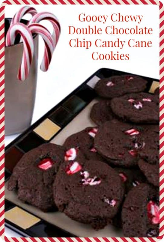 Gooey Chewy Double Chocolate Chip Candy Cane Cookies Recipe
