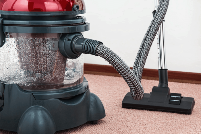 How to Handle a Carpet Beetle Infestation