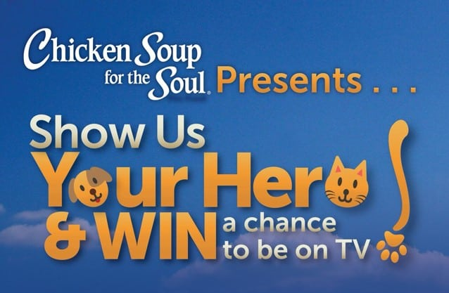 chicken soup for the soul pet hero #MyPetIsMyHero