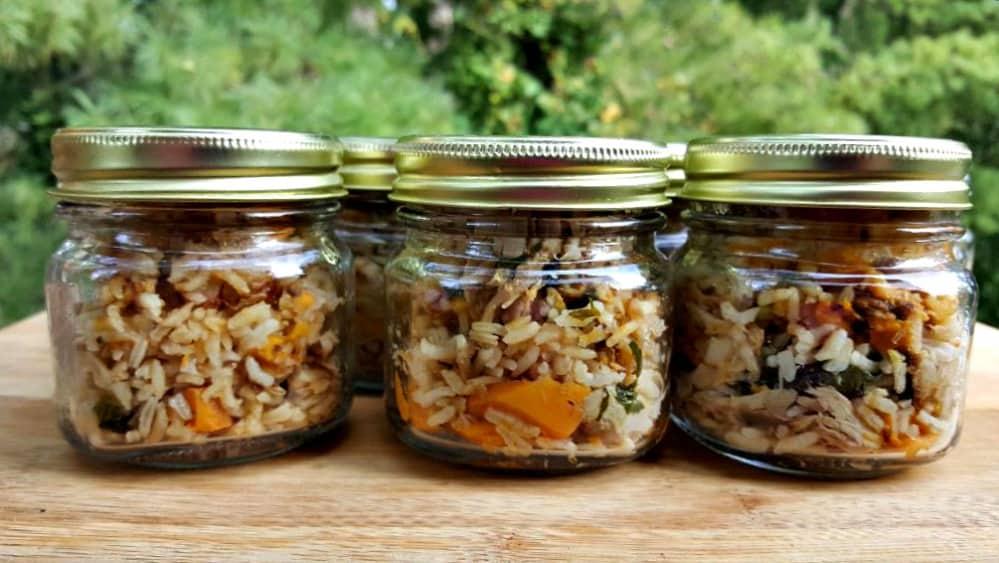instant pot dog food in jars