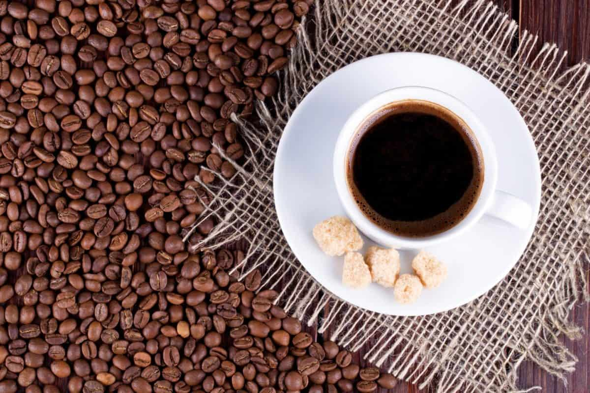 in defense of a good cup of coffee